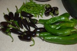 fall harvest peppers